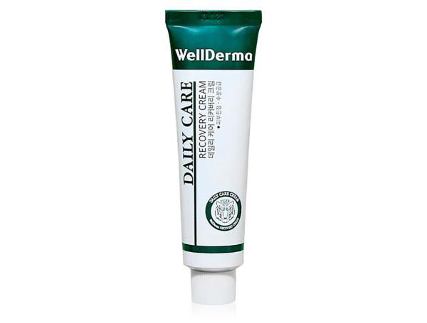 Восстанавливающий крем для чувствительной кожи лица с центеллой WellDerma Daily Care Recovery Cream, 30мл - Фото №1